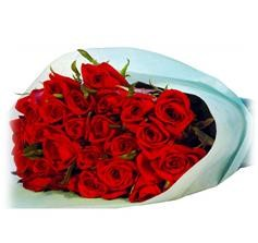اسطنبول sfari_5955a345bb9652