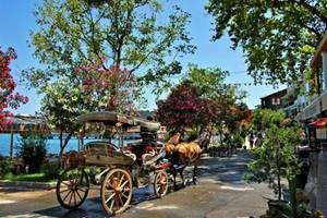 اسطنبول sfari_71f6d798e0ef9e