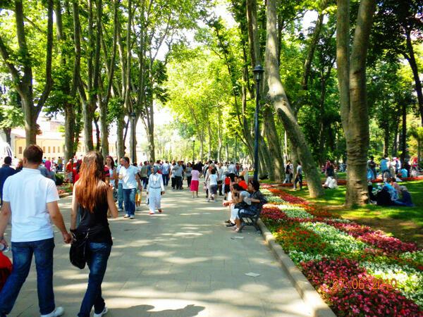 اسطنبول sfari_f57f87db533198