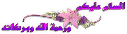sfari_a26b6ab91334c0