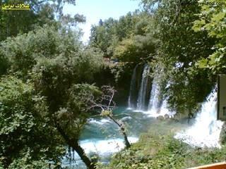 اسطنبول sfari_c79eca60024929